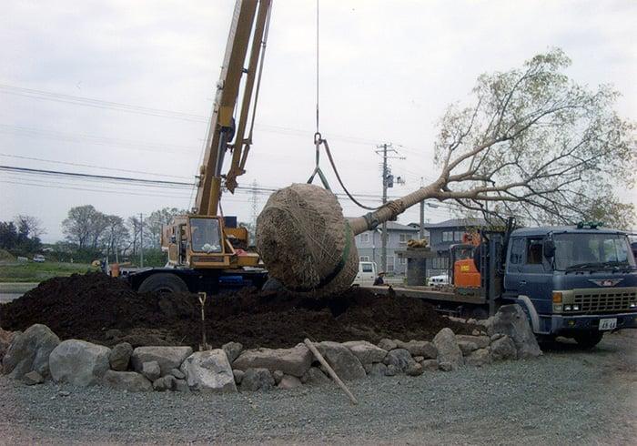 造園作業施工例